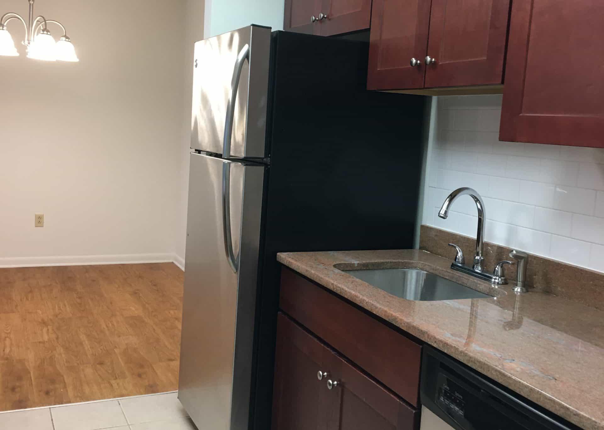 kitchen sink and fridge