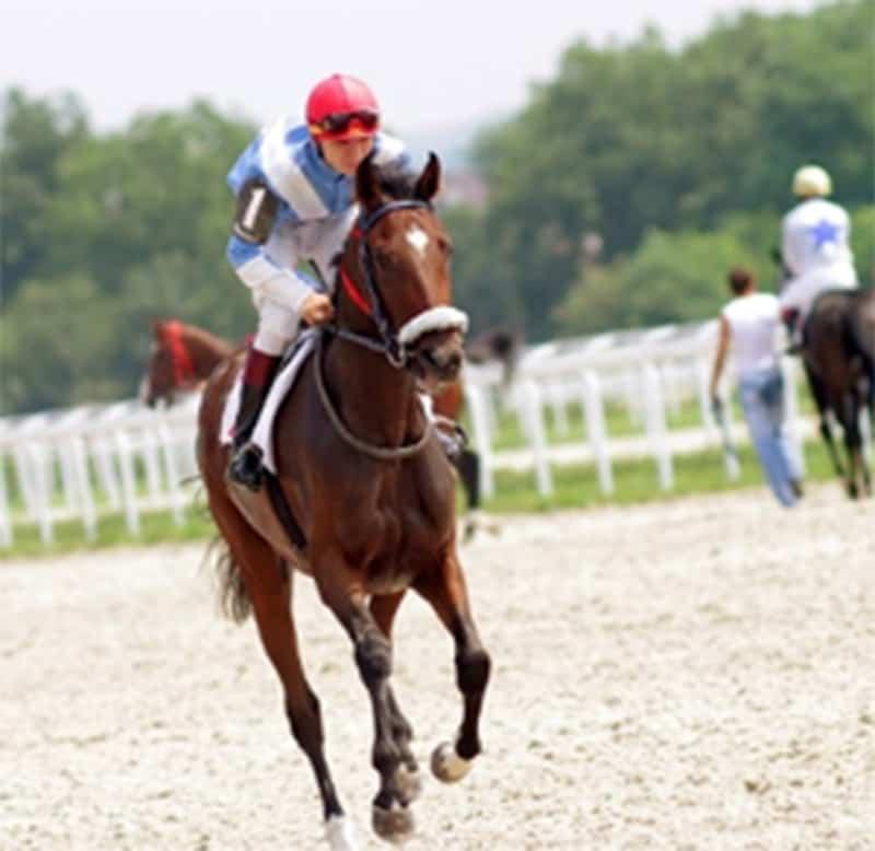 Jockey riding horse at Saratoga Race Course